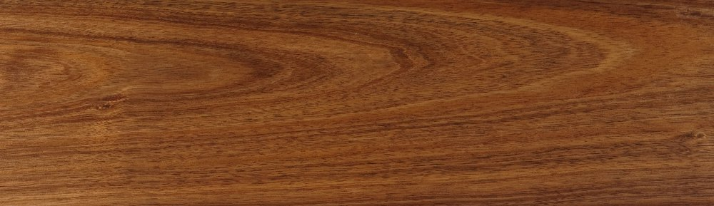 Timbers Britton Timbers